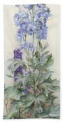 Delphiniums Beach Towel by James Valentine Jelley