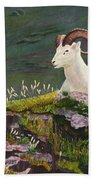 Denali Dall Sheep Beach Towel