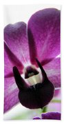 Dendrobium I Beach Towel
