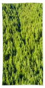 Dense Forest Beach Towel