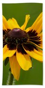 Denver Daisy Beach Towel