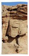 Desert Face Beach Towel
