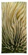 Desert Green Beach Towel by Ben and Raisa Gertsberg