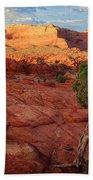Desert Juniper Beach Towel by Inge Johnsson