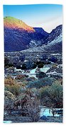Desert Life Beach Towel