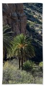 Desert Palms Beach Towel