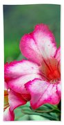 Desert Rose At Kualoa Beach Towel