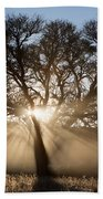Desert Tree Beach Towel