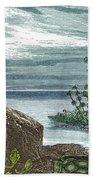Devonian Period Beach Towel