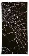 Dew Drops On Spider Web 4 Beach Towel