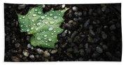 Dew On Leaf Beach Sheet