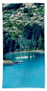 Diamond Harbour Beach Towel