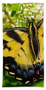 Dinner For The Swallowtail Beach Towel