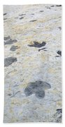 Dinosaur Tracks Beach Towel