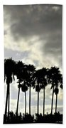 Disney's Epcot Palm Trees Beach Towel