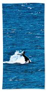 Diving I Beach Towel