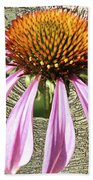 Divinity Gold - Echinacea Beach Towel