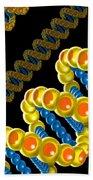 Dna Strand - Dna Strands Art - Genetics Genetic - Gene Genes - Conceptual - Abstract Illustration Beach Towel