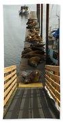 Dock Sea Lions Astoria Or 1 A Beach Towel