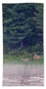 Doe And Fawn In The Early Morning Beach Towel