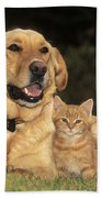 Dog With Kitten Beach Towel