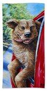 Dog...gone Happy Beach Towel