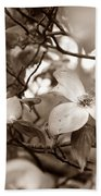 Dogwood Blossoms Beach Towel by Sharon Popek