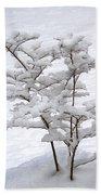 Dogwood In Snow Beach Towel