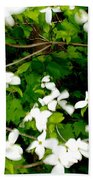 Dogwood In The Wind Beach Towel