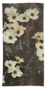 Dogwood Winter Beach Towel
