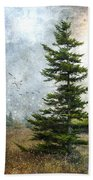 Dolly Sods Pine Beach Towel