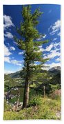 Dolomites - Tree Over The Valley Beach Towel