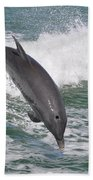 Dolphin Leap Beach Towel