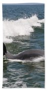 Dolphin Surf Beach Towel