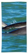 Dolphins Beach Towel