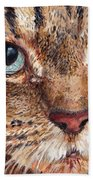 Domestic Tabby Cat Beach Towel