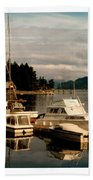 Domino At Alderbrook On Hood Canal Beach Towel