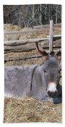 Donkey In Hay Beach Towel