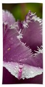 Dont Call Me A Monster Just Because I Have Teeth Purple Tulip Beach Towel