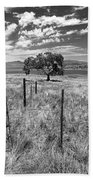 Don't Fence Me In - Black And White Beach Towel