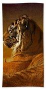 Don't Wake A Sleeping Tiger Beach Towel