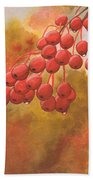 Door County Cherries Beach Towel by Rick Huotari