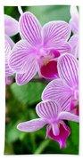 Doritaenopsis Flower Beach Towel