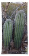 Double Barrel Saguaro Beach Towel