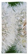 Double Dandelion Wishes Beach Towel