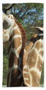 Giraffes With A Twist Beach Towel