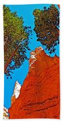 Douglas Firs On Wall Street On Navajo Trail In Bryce Canyon National Park-utah Beach Towel