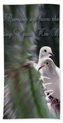 Love Doves Beach Towel