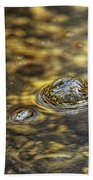 Down By The Bubbling Spring Beach Towel
