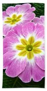 Down On Primrose Lane Beach Towel